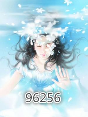 安坤冉琪小說 96256完整版閱讀
