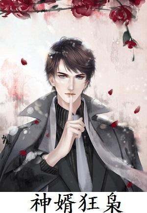 張玄林清菡小說章節 神婿狂梟在線閱讀