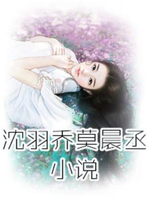 女主沈羽乔小说 沈羽乔莫晨丞在线阅读