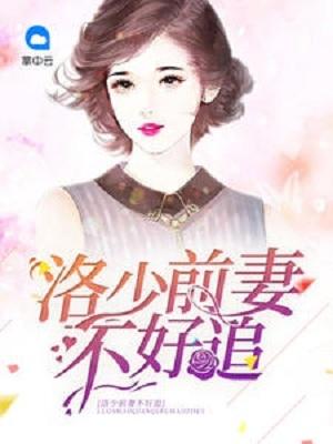 洛少前妻不好追小说 云卿卿洛司晨精彩章节阅读
