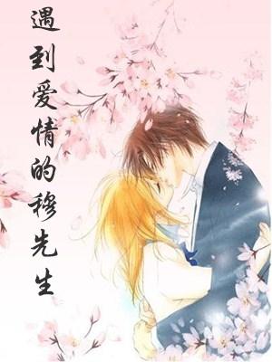 遇到愛情的穆先生錦年小說 遇到愛情的穆先生