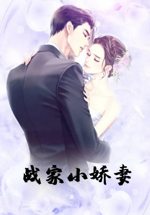 白夏沫战骁小说(甜宠文) 战家小娇妻全文阅读
