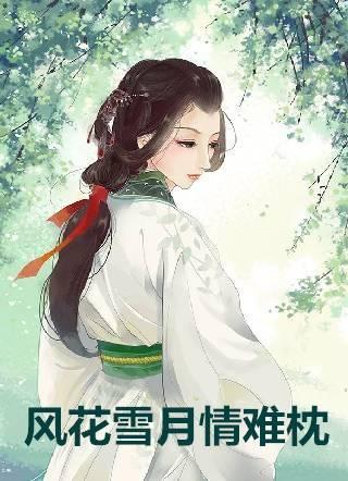 风花雪月情难枕小说(蒸饺著) 盛晴周安谨袁玉盈完本阅读