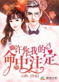 许你我的命中注定小说 刘尔龙舟最新章节阅读